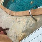 Pool beim Zimmer 414, bereits sehr schmutzig und alt!