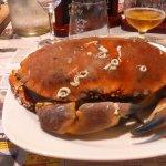 Foto de Le Crabe Marteau