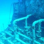 Photo of Stuart Cove's Dive Bahamas