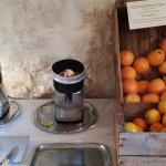 orange ou pamplemousse pour jus de fruit frais