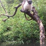 Photo of Paignton Zoo Environmental Park