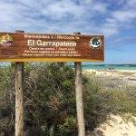 Photo of El Garrapatero