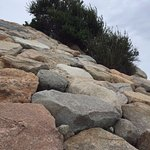 Rocks leading down to the water