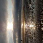 20170811_190107_large.jpg