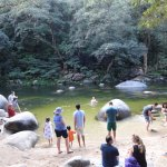 Photo of Mossman Gorge
