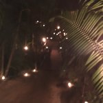 Foto de Rhythms of the Night by Vallarta Adventures