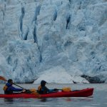 Kayaking in front of Aialik Glacier