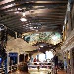 Foto de Key West Aquarium