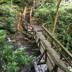 Photo de Dingmans Falls