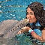 Photo of Dolphin Discovery Puerto Vallarta