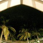 Фотография Viwa Island Resort