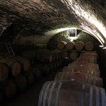 Photo de Tuscan Wine Tours by Grape Tours