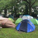 Photo of Camping Vliegenbos