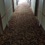 Hall carpet