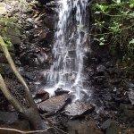 Gortletteragh Falls