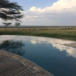 View from the camp pool to the Mara.