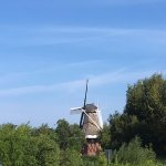 The view of the windmill from the parking lot.