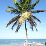 Punta Allen Foto