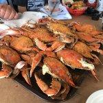 Wonderful crabs!