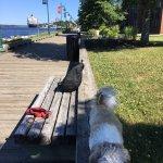 Stella by the boardwalk outside the hotel