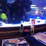 Photo of Shark Pit Bar and Grill