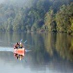 Kayak along the Pieman River