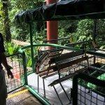 Foto de Rainforest Adventures