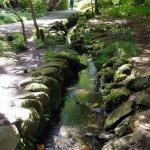 stream running through gardens