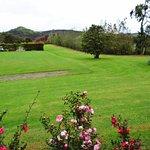 Photo of Stonyridge Vineyard