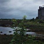 Dunguaire Castle (Cliffs of Moher Tour)