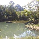Une piscine naturelle