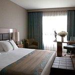 Photo de Holiday Inn Nice