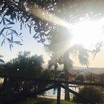 Foto de Hotel Sindhura