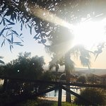 Photo de Hotel Sindhura