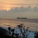 Billede af Dolphin Point Bed & Breakfast