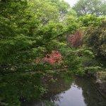 Foto di West Lake Colored Port View Fish Garden
