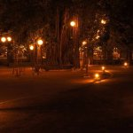 The Banyan tree at night