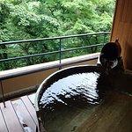 Photo of Hakone Ginyu