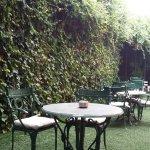 Jardín cafetería.