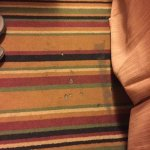 Carpet beside bed