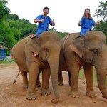 Anantara Golden Triangle Elephant Camp & Resort Foto