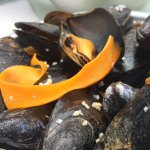 The Mussels