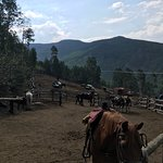 Vail Stables
