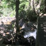 Great hike with kids and elderly. Paved. Take your time and enjoy the hike. It gets busy at wate