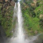 Photo of Wli Waterfalls