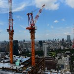 Cranes and Tokyo Tower