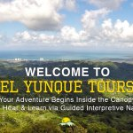 Welcome to El Yunque Tours!