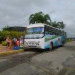 Bus para traslado al embarcadero