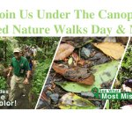 Join Us Under the Canopy!