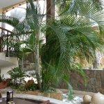 Hotel Dubrovnik Photo